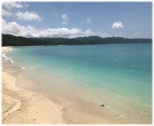 沖縄 海 美ら海