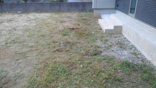 草刈り後 外溝